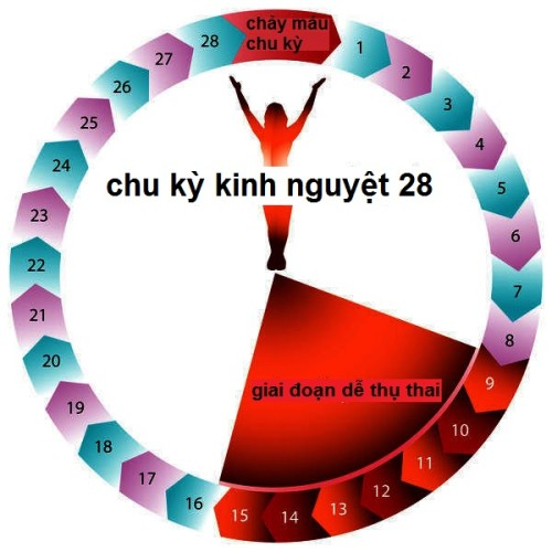 phu-nu-vo-sinh-co-kinh-nguyet-khong