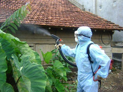 Bộ y tế tăng cường công tác phòng chống dịch sốt xuất huyết.