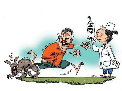 Bệnh dại chưa có thuốc điều trị đặc hiệu do đó cần chủ động phòng tránh.