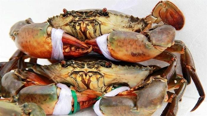 Sau sinh mổ bao lâu thì được ăn hải sản? 3