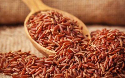 Hướng dẫn giảm cân sau sinh bằng gạo lứt