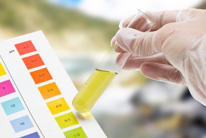 Kết quả xét nghiệm nước tiểu sẽ sớm phát hiện những bất thường và có hướng xử trí kịp thời