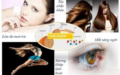 Có thai uống collagen được không?