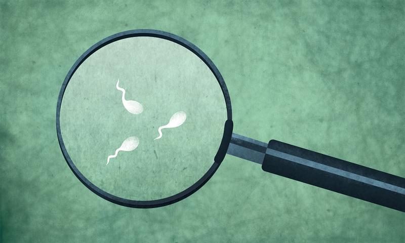 Khám nam khoa có thể đánh giá được chất lượng tinh trùng, từ đó dự đoán khả năng sinh sản của nam giới.