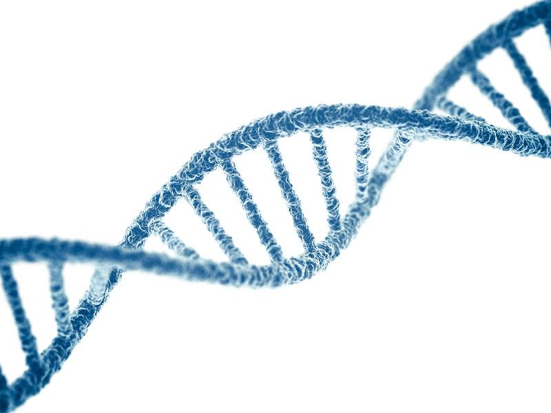 Bất thường về nhiễm sắc thể là một trong những nguyên nhân vô sinh nam, mà không hề có biểu hiện ra ngoài.