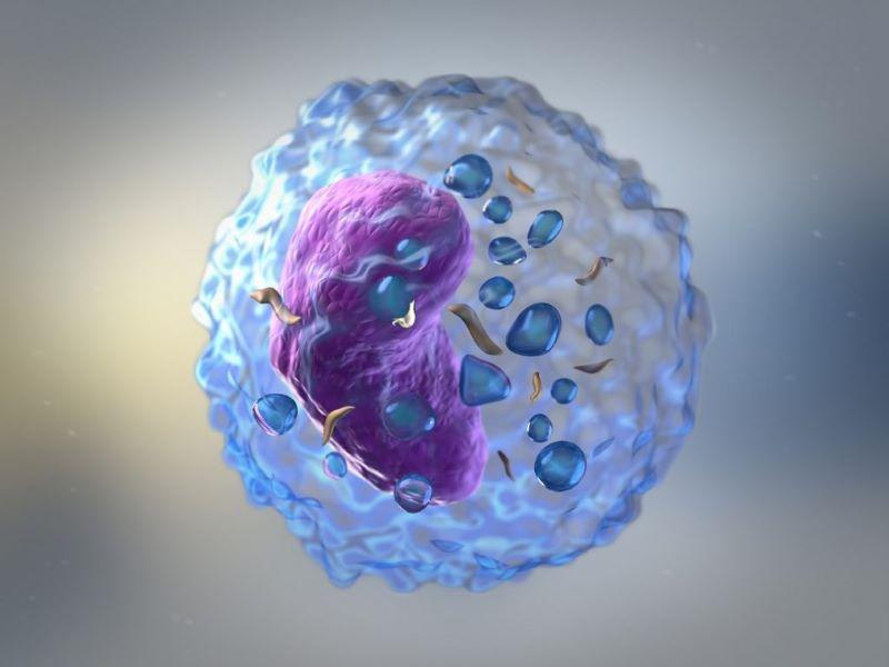Xét nghiệm đo hoạt tính tế bào NK được sinh thiết ở nội mạc tử cung