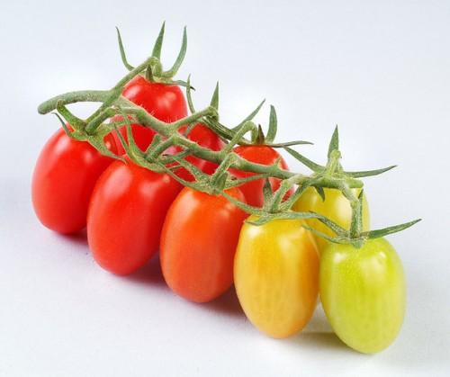 Cà chua bi chứa nhiều vitamin C và cung cấp hàm lượng lớn lycopene – một chất chống oxy hóa giúp ngăn ngừa bệnh ung thư và bệnh tim. Cộng với một số lượng lớn chất xơ, vitamin A và một ít folate, cà chua bi là món ăn được coi là nhiều dinh dưỡng.