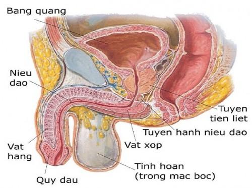ban-da-biet-viem-nieu-dao-bieu-hien-nhu-the-nao-chua3