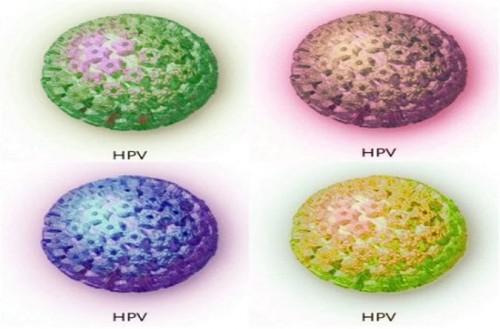 Ung thư cổ tử cung do virus HPV gây ra