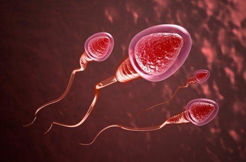 Tinh trùng yếu là một trong những nguyên nhân gây ra tình trạng vô sinh, hiếm muộn