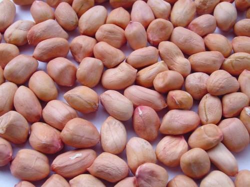Ăn protein từ thực vật như đậu và đậu phộng giúp tăng khả năng sinh sản ở nữ giới. Họ nhà đậu như đậu đen, đậu đỏ, đậu xanh cũng chứa nhiều sắt, vitamin nhóm B và nhiều dưỡng chất khác rất có lợi cho khả năng thụ thai.