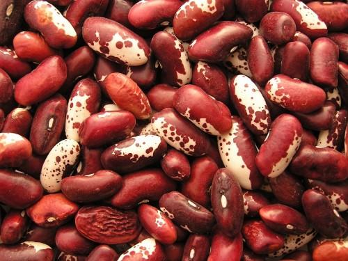 Nếu mẹ bầu ăn một cốc đậu côve đỏ thì mẹ đã cung cấp 80% nhu cầu thiết yếu của cơ thể mỗi ngày rồi đấy. Loại đậu này rất rẻ, dễ chế biến và được bán ở nhiều nơi nên mẹ sẽ không quá khó khăn để kiếm ra chúng.