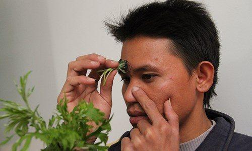 Phương pháp diện chẩn chữa vô sinh được giới thiệu là phương pháp bấm huyệt trên mặt và hơ nóng các huyệt này bằng ngải cứu