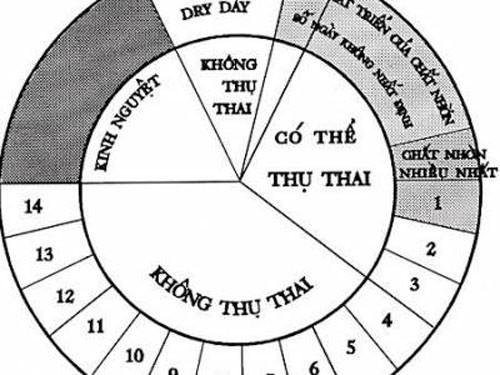 kinh-nguyet-khong-deu-muon-co-thai-phai-lam-gi1