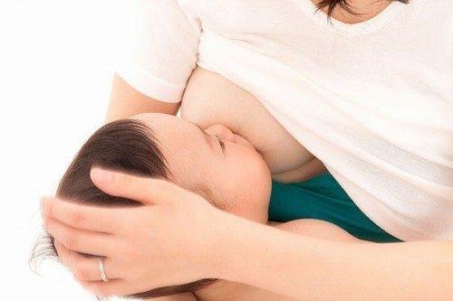 Có rất nhiều loại thuốc dân gian chữa tắc tia sữa hiệu quả