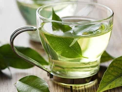 trà chứa lượng caffein có thể gây ảnh hưởng đến thai, lượng caffeine giúp làm giảm hấp thụ axit folic
