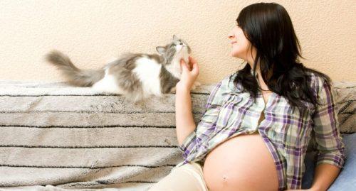 Môi trường sống không trong lành tiếp xúc với lông động vật thường xuyên có thể là nguyên nhân của dị ứng khi mang thai.