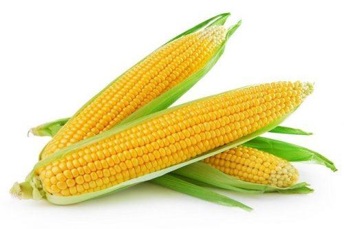Ngô là thực phẩm tốt cho sức khỏe của mẹ sau sinh cần được bổ sung hàng ngày